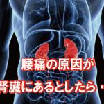 腎臓が腰痛の原因だったら?