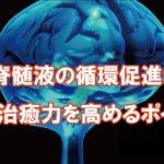 脳脊髄液と自然治癒力